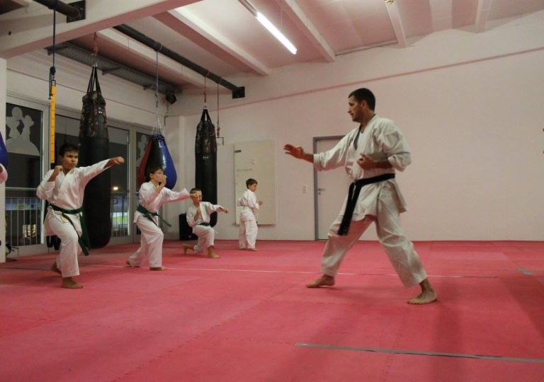 16.Karate