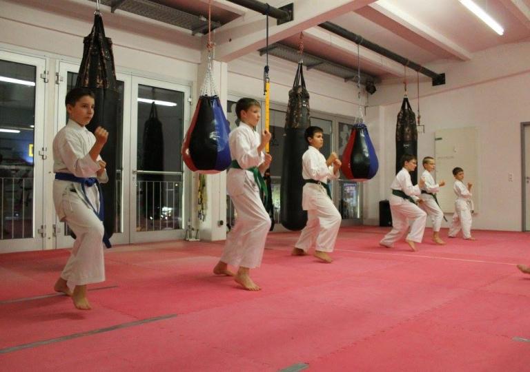 17.Karate